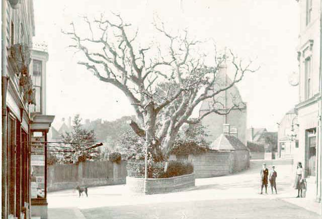 Bexhill Old Town Circa 1900