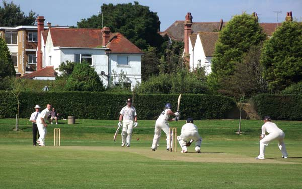 Cricket at The Polegrove
